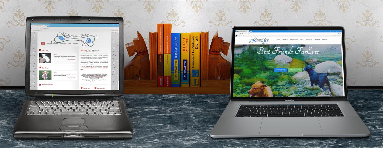 Best Friends FurEver website, old versus new