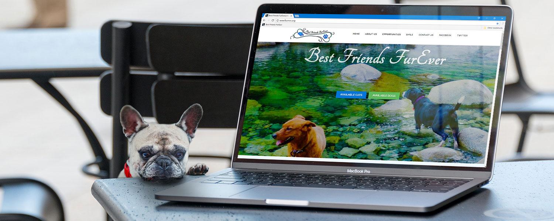 Best Friends FurEver website
