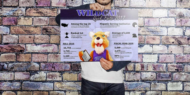 Wildcat Quick Facts poster